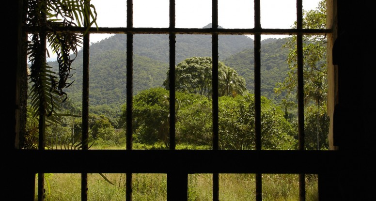 view from prison